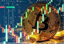 Symbol bitcoina na tle wykresów świecowych